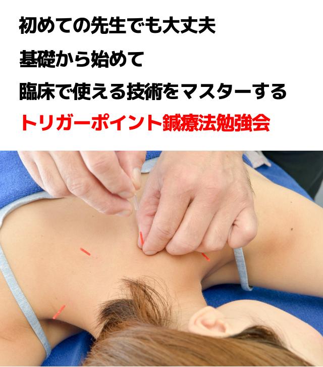 トリガーポイント鍼療法勉強会